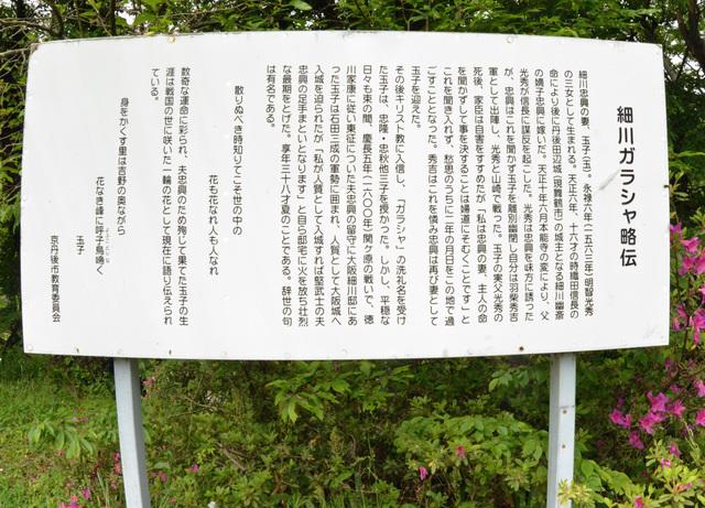 10.200522味土野Bガラシャ略伝4739b.JPG