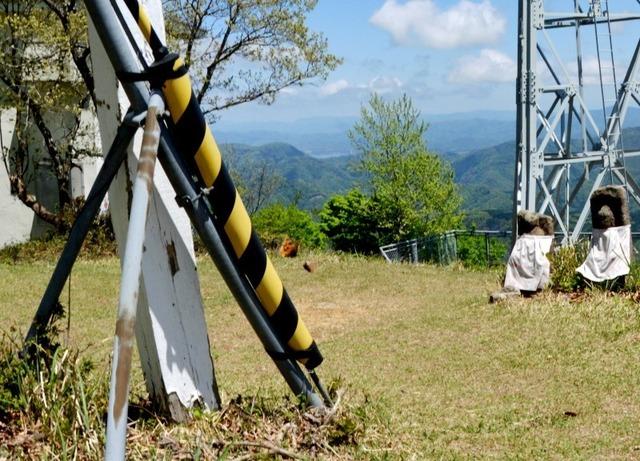 8.200507来日岳Bヒオドシチョウvsミヤマセセリ4371smS.jpg